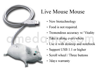Live Mouse Mouse